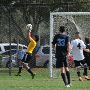 Goalie Catch
